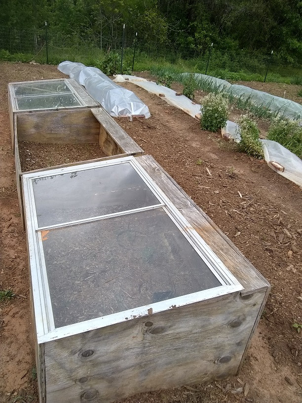 cold frames, low tunnel and row covers