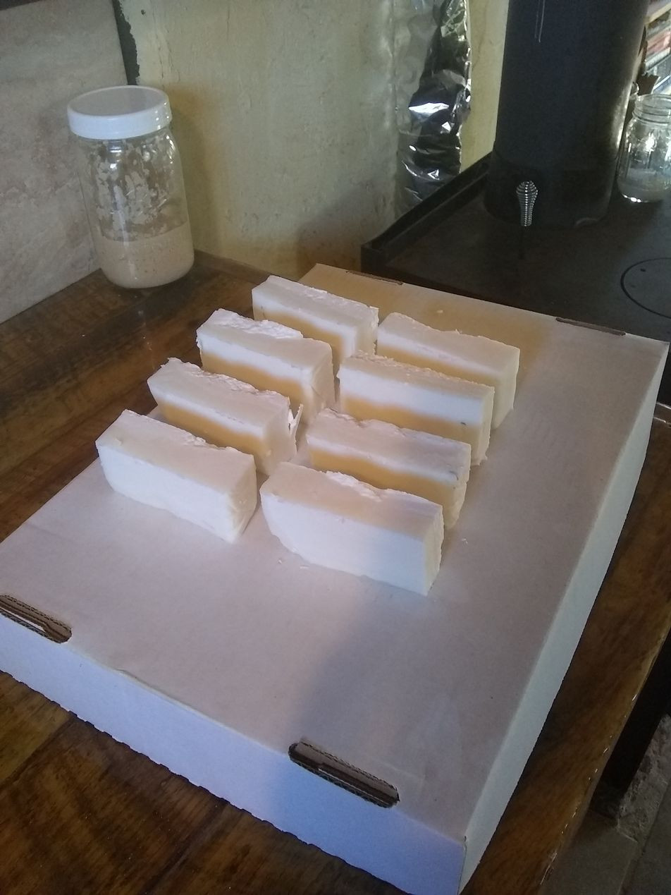 soap bars curing.