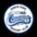 Logo Cosmos.png