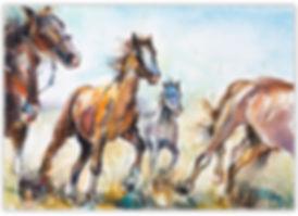 SDrey_ Horse Stampede #2.jpg
