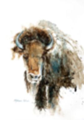 Bison in Blue mini.jpg