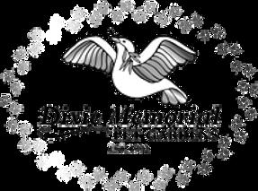 logo-462x344-205w_edited.png