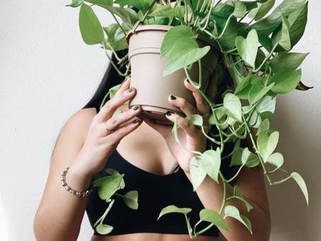 Why you should love your body as much as you love your plant(s).