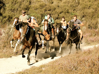 A father's gift to ride New Zealand on horseback