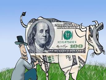 El Dólar y las vaquitas se van por la misma senda