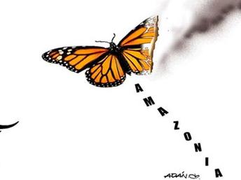 Fuego, Hashtag y Capital: La amazonía en llamas (1)