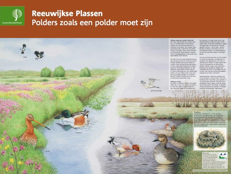 Reeuwijkse Plassen, Reeuwijk