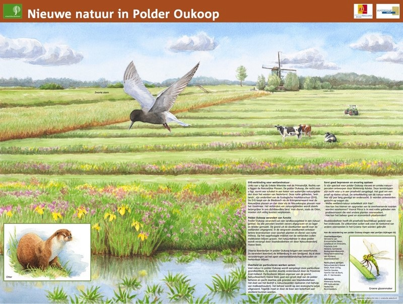 Polder Oukoop, Reeuwijk