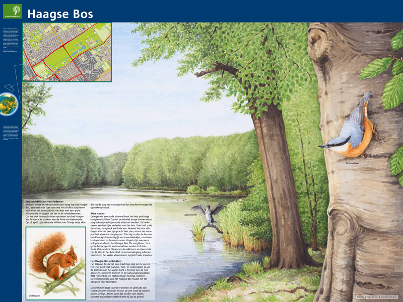 Haagse Bos, Den Haag