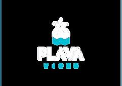 plava_video_logo-06.png