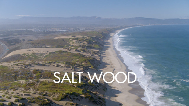 Salt Woods_FINAL_2.8.mp4