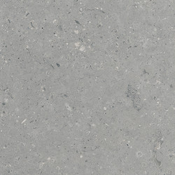 Arkaim Grey