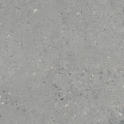 Arkaim Grey 4