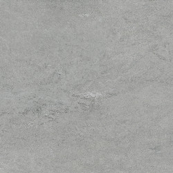 Kondjak Grey2
