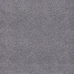 Эльбрус серый