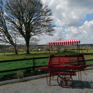 Original Dublin Market Cart