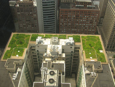 2880px-20080708_Chicago_City_Hall_Green_