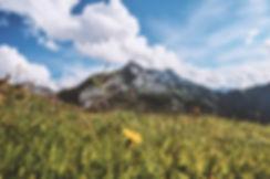 elope in the Alps.jpg