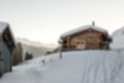 small wedding Alps.jpg