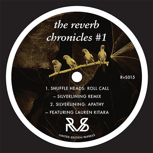 Various Artists - The Reverb Chronicles #1