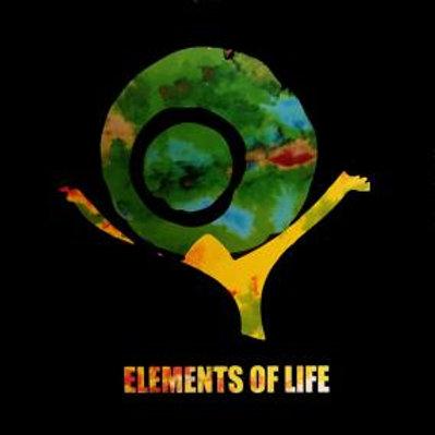 ELEMENTS OF LIFE - INSTRUMENTALS
