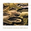 Thumbnail: THE MABON DAWUD REPUBLIC