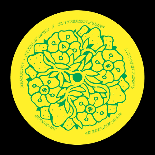 Various Artists - Braw Shelter EP