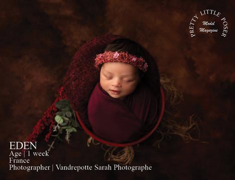 Vandrepotte Sarah photographe