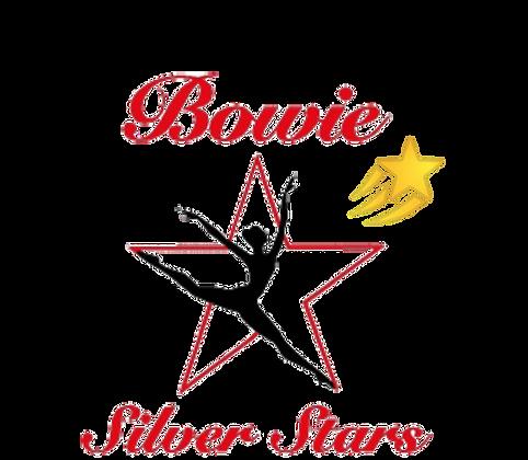 Shooting Star Corporate Sponsorship