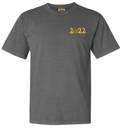Gray T Shirt