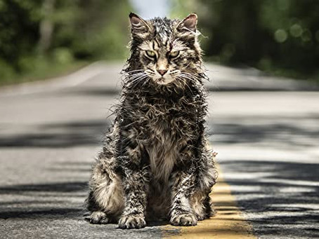 Pet Sematary (2019) - Directed by  Kevin Kolsch, Dennis Widmyer / Pet Sematary (1983) - Stephen King