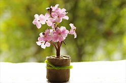 桜置物_R.jpg