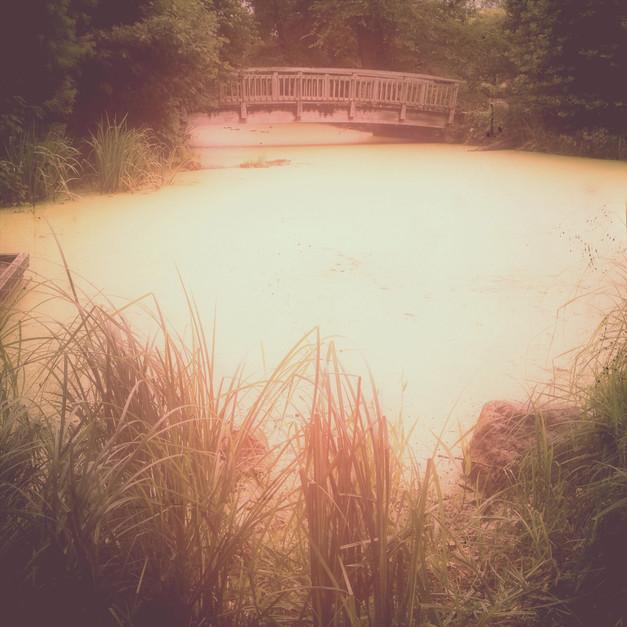 Olbrich Botanical Gardens, Madison, WI