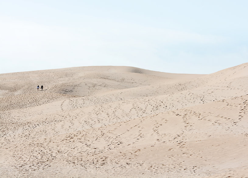 Bolonia Dune.jpg