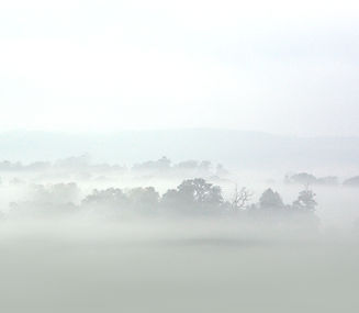 Morning mist over the Cowdray Polo Pitch