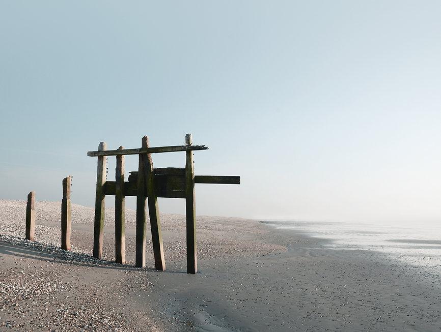 Giant Sea Monster Pagham Beach.jpg