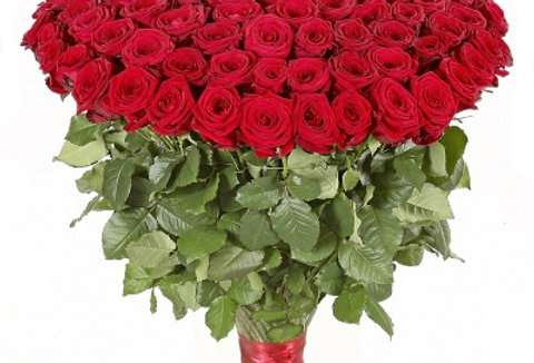 50 ROSE ROSSE A GAMBO LUNGO RED NAOMI