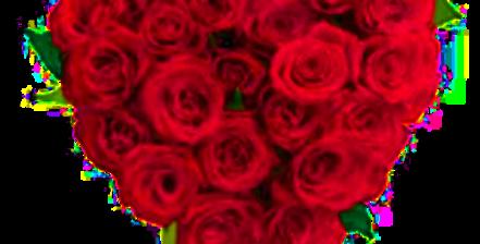 PICCOLO CUORE DI ROSE ROSSE MEDIE