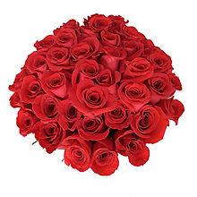 un mazzo di rose rosse. regalo di compleanno per moglie, fidanzata, mamma. www.fiorfioronline.com