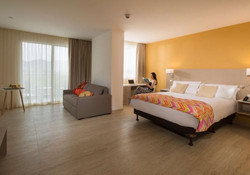 Hotel Mercure Room