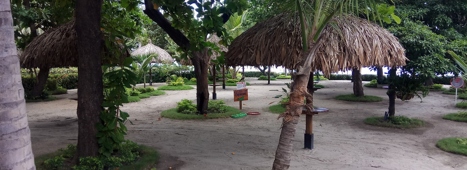 RDM 104 M2-beach private outdoor patio.j
