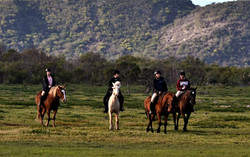 Horse Safari at Duinefontein