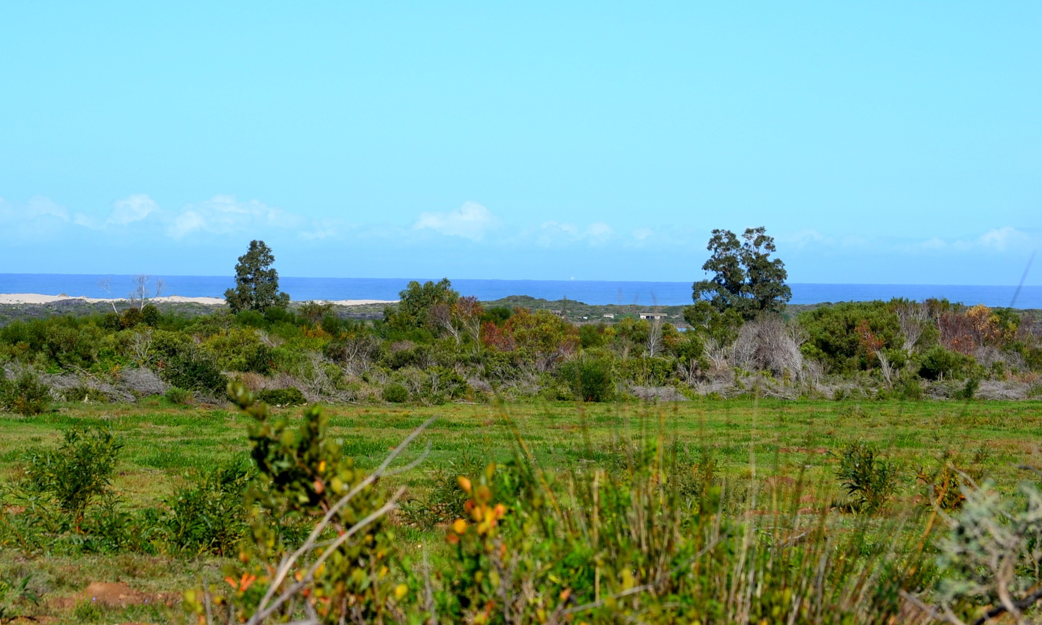 View from Duinefontein