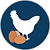 Chicken Egg Logo Coloured (Blue).png