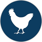 Chicken Logo Blue PNG.png