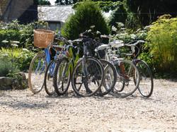 Plenty of Bikes to Choose