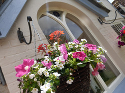 Summer colour at Home Farm House
