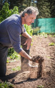 farming soil