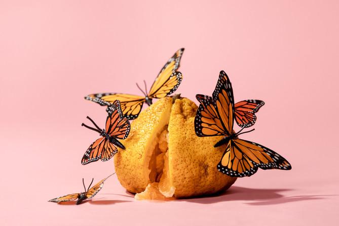 Tangerine with butterflies