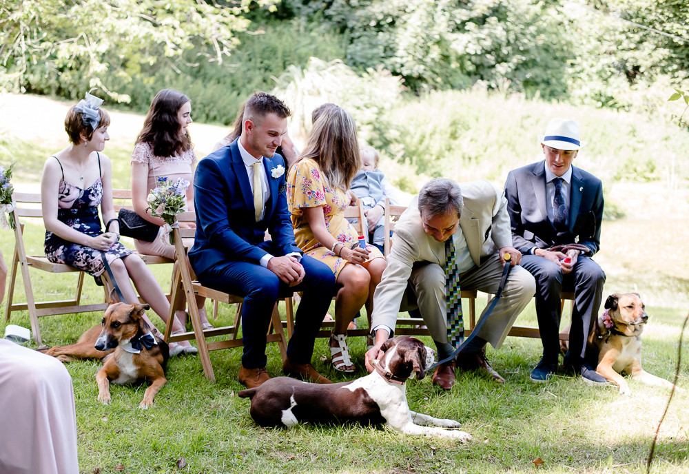 Dog friendly wedding venues in Cornwall